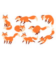 cartoon red fox funny foxes with black paws cute vector image vector image