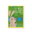 cute hare with woodland animal vector image vector image
