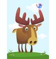funny cute cartoon moose vector image vector image