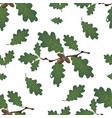 green branches of oak with acorns and leaves vector image vector image
