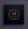letter m premium logo design concept for your vector image