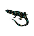 lizard reptile color silhouette animal vector image