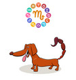 scorpio zodiac sign with cartoon dog vector image vector image