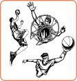 basketboll vector image vector image