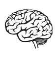 black Brain icon vector image vector image