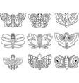 butterflies hand sketch outline vector image vector image