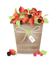berry fruits and cherry in a basket vector image vector image