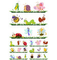 different types insects on grass vector image