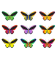 Set of multicolored butterflies on a white vector image vector image