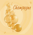 sparkling bubbles vector image vector image