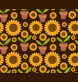 summer seamless pattern with yellow sunflower vector image vector image