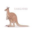 a cartoon kangaroo with a joey isolated on a vector image