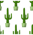 Cactus - floral seamless pattern