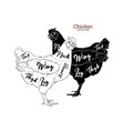 Chicken cuts diagrams for butcher shop scheme of