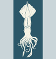 squid icon isolated vector image