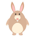 cute rabbit with brown fur vector image vector image