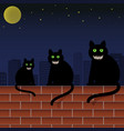 family cats with green eyes and scary faces vector image