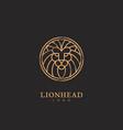 lion logo vector image vector image