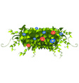 Nature design with leaves and flowers vector image vector image