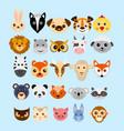 Set cute cartoon animals