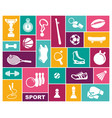 sports icons in flat style vector image