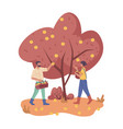 autumn garden people picking or plucking apples vector image