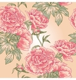 Elegance Seamless peony pattern vector image vector image