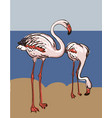 painted flamingo bird vector image