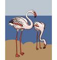 painted flamingo bird - vector image