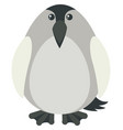 penguin with gray color vector image vector image