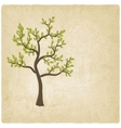 tree old background vector image vector image