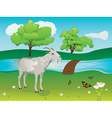 Goat and Green Lawn vector image vector image