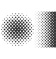 linear and radial gradient halftones vector image vector image