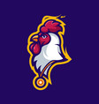 rooster with medal vector image