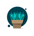 succulent haworthia in pot thin line icon modern vector image