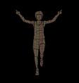 the winner athlete runner runner running vector image vector image