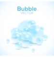Transparent bubbles isolated on white vector image vector image