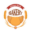always fresh bakery croissant icon with wheats vector image