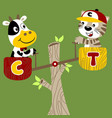 cute baby cartoon animals play seesaw vector image