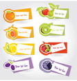 fruit labels vector image vector image