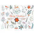 hand drawn decorative christmas holly misletoes vector image
