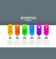 infographics creative concept business info vector image vector image