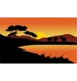 Landscape elephant of silhouette vector image