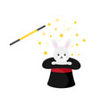 magician hat with rabbit and magic wand vector image vector image