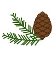 pinecone icon a branch of pine from coniferous vector image vector image