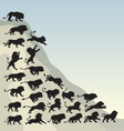 Running lion silhouettes vector image vector image