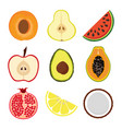 set with slices of fruits vector image vector image