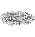 what is pet day care text word cloud concept vector image vector image