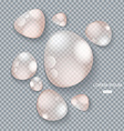 Pure clear water drops on gray transparent vector image