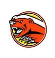 angry honey badger mascot vector image vector image